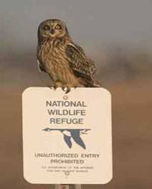 Cape May National Wildlife Refuge sign