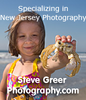 Steve Greer Photographer