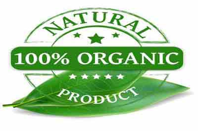 New Jersey Organic Food Stores