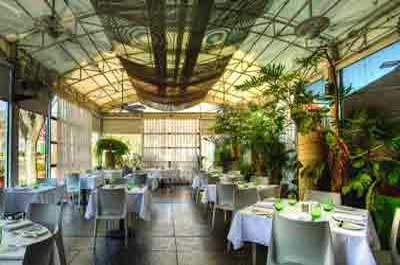 The Frog and Peach Restaurant