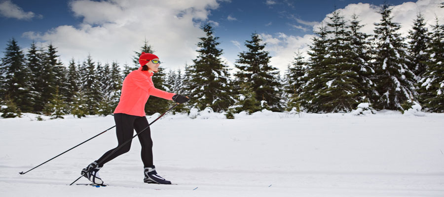 Best cross country skiing trails in new jersey for Achillion greek cuisine prince george bc