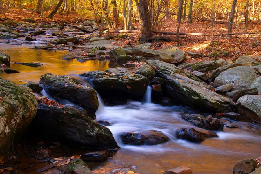 Best New Jersey Fall Trips