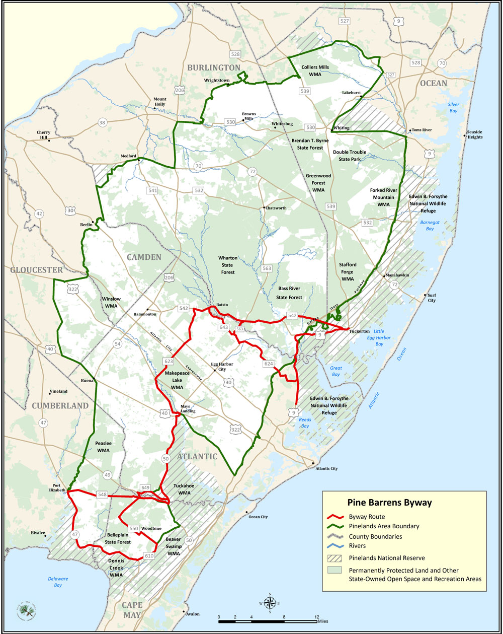 the pine barrens in new jersey should be protected Information about the 83 species of new jersey wildlife that are listed as endangered and threatened pine barrens of southern new jersey should be protected.