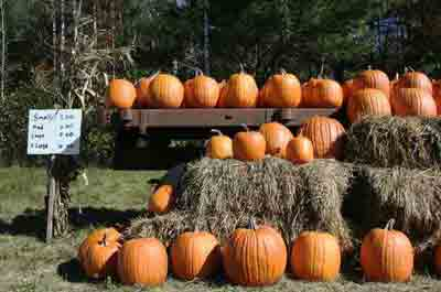 Things to do in NJ in October