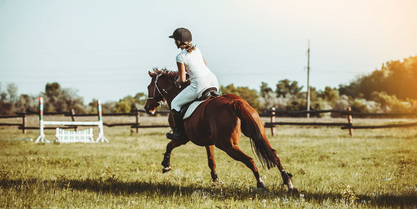 Kids Horseback Riding Camps in New Jersey