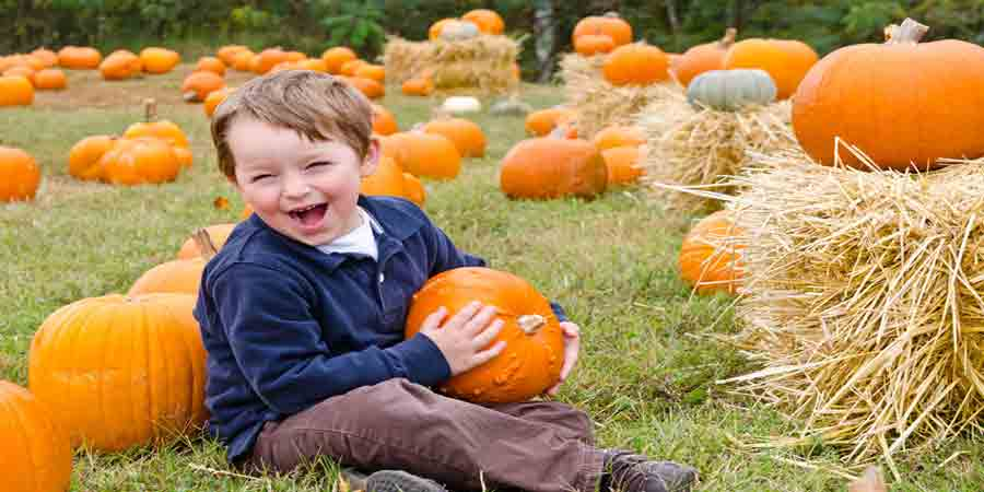 Pumpkin Picking Farms in New Jersey